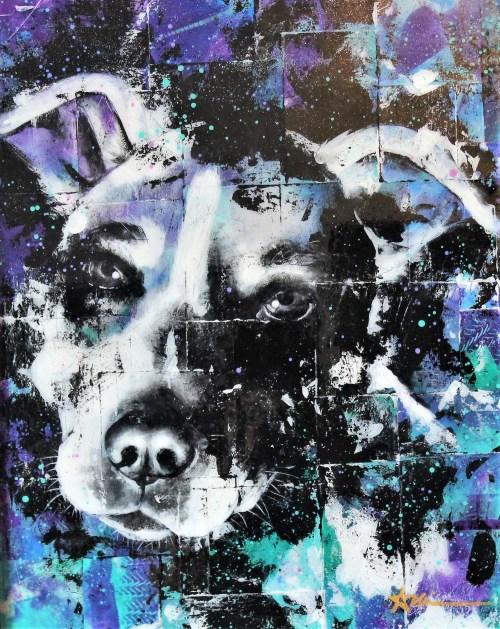 Portrait de Datcha le chien