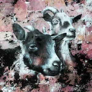 Portrait de Josie-Mae et Willow (chèvres)