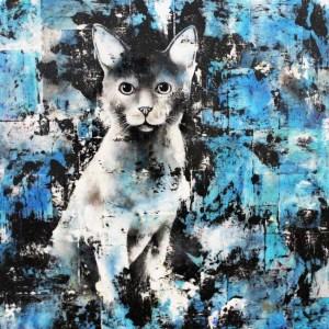 Portrait de chat - Zucchini