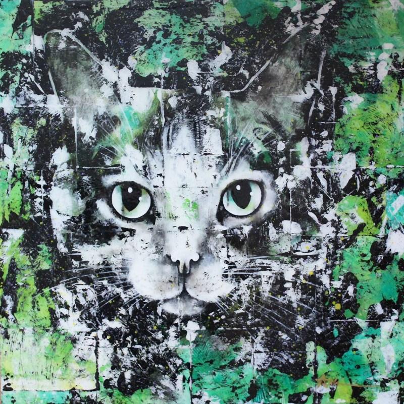 Portrait de chat - Pomme