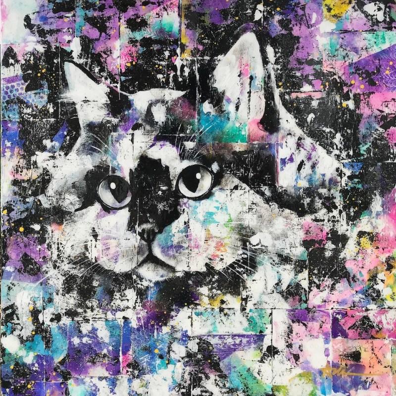 Portrait de chat - Jack