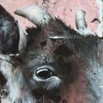 Détails du portrait de Josie-Mae (chèvre)