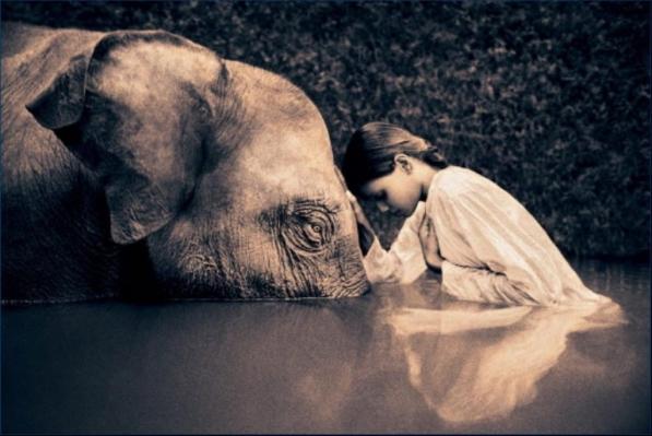 Ormai solo un bagno di umiltà ci può salvare