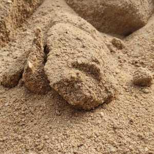 AriBuy Selection Sand