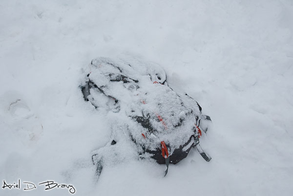 Snow-covered pack