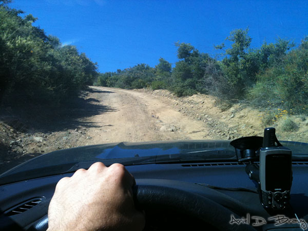 Driving along the 4x4 road