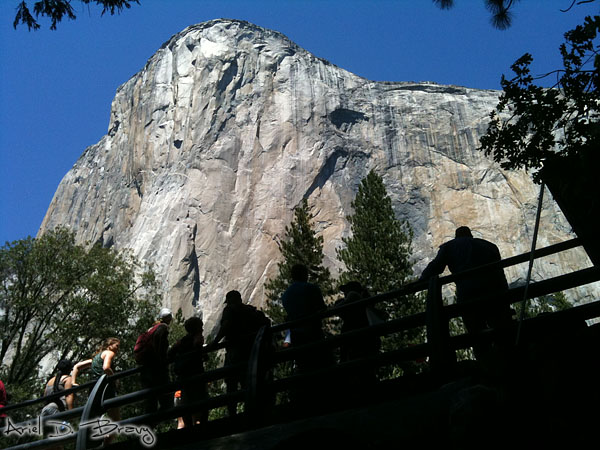 Watching the King Swing on El Capitan
