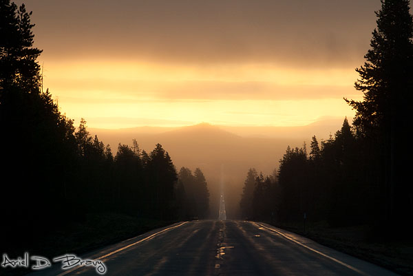 Driving into the Oregon sunrise