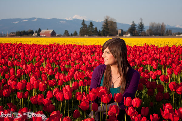 Portrait of Anna in the red and yellow fields