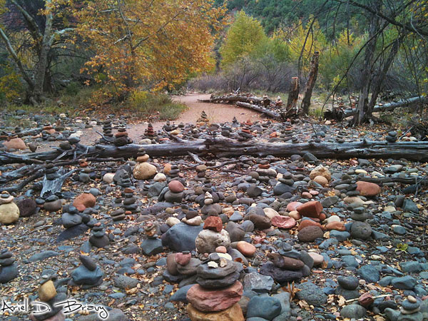 Rocks stacked amongst the trees