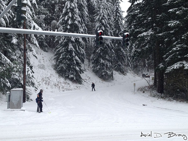 Skiing down the hill, and a driver waiting for the skiers to make it