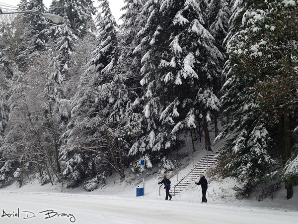 The skiers cross country skiing down the sidewalk