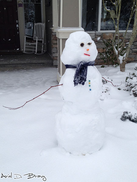 This snowman even has buttons and arms