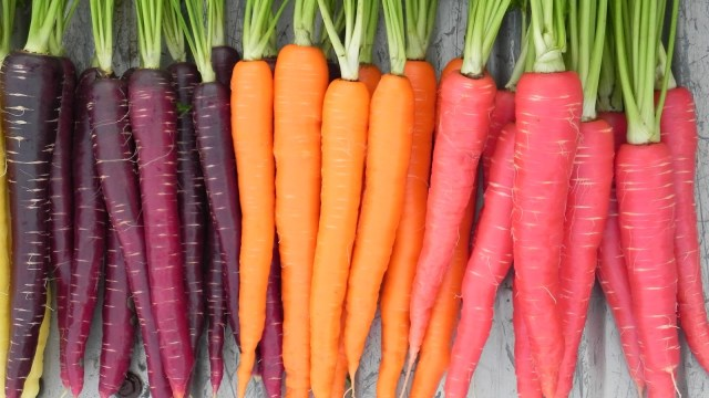 HEALTHY RECIPES: Garden Vegetable Soups, with Carrots