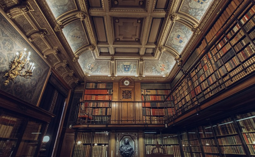 Cats and Dogs in the Library – Non-Human, Human and Superhuman Rationality