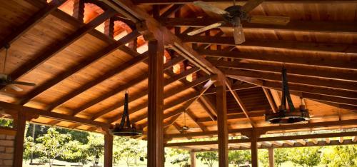 Caribbean Pine Ceiling