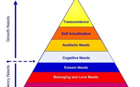 Maslow's Hierarchy of Needs (8 levels)