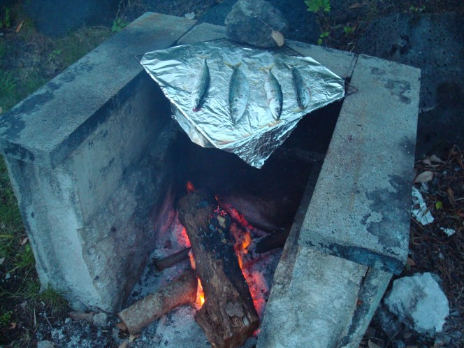 Grilling fish on a campfire, Japan