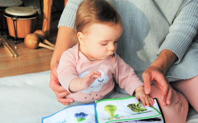Reading to Your Toddler