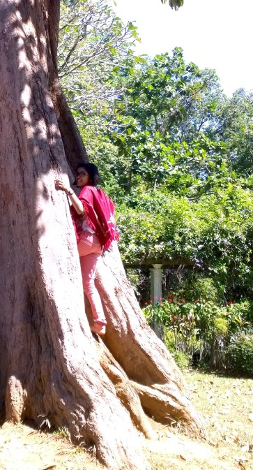 16.12.23 SL Kandy (26) Botanical Gardens