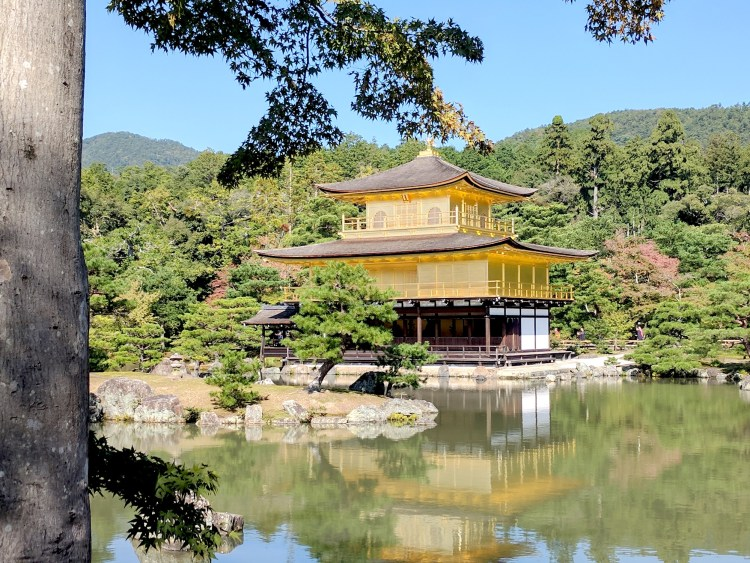My Top 10 Amazing Experiences in Japan - Golden Temple