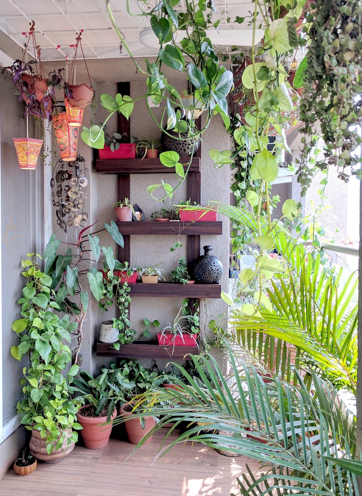 A Balcony Garden In Mumbai Terrace Reveal One Brick At A Time