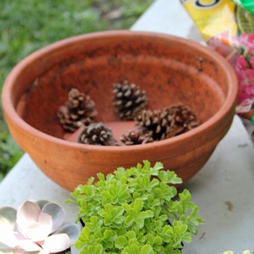 Glazed Garden Pots