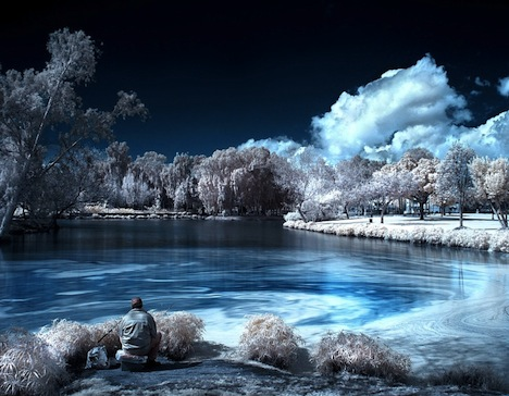 Infrared Tree and Lake