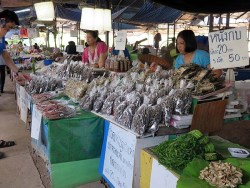 Thai Market - dried mushrooms