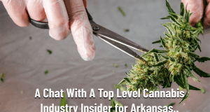 Exclusive Chat With Top Level Cannabis Industry Expert about Arkansas Cannabis Shortage