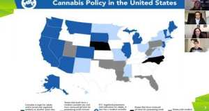 Future Of Cannabis Legalization 2022