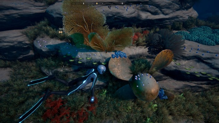 Análise Arkade: Beyond Blue, um jogo que nos ensina muito sobre a vida marinha