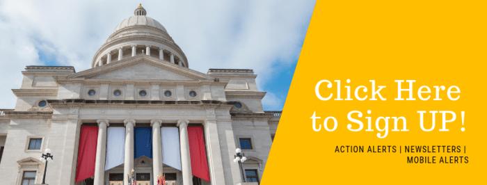 Arkansas Advocates 2019 Legislative Session Recap, Vol. 11