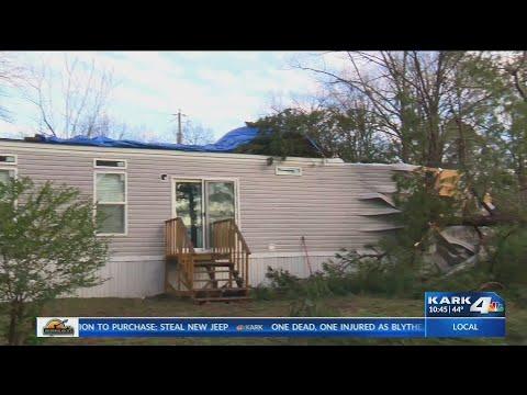 VIDEO: Tree pinned down women inside her home