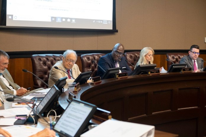 Board of directors hears parks, zoo task force recommendations - Arkansas Times