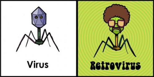 Resultado de imagen de virus retrovirus