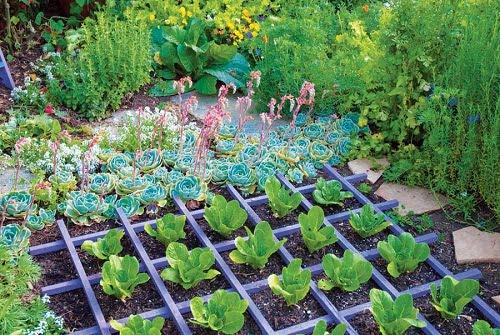 Ideas para dise ar un jard n org nico arkiplus for Jardin organico