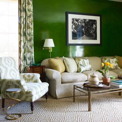 Salas verde oscuro for Parete sala