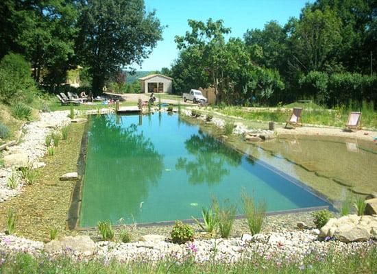 Piscinas ecol gicas arkiplus for Albercas ecologicas