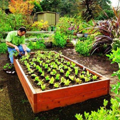 ideas-jardin-ecologico2