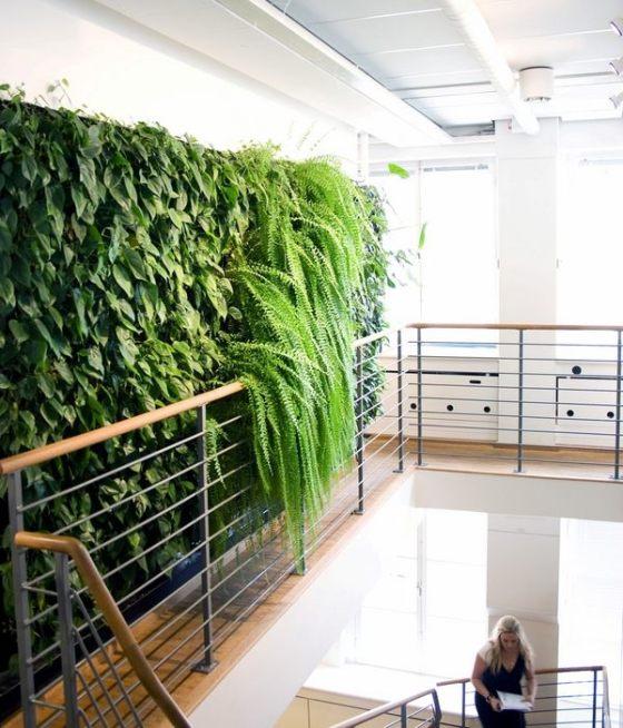 jardines-interiores4