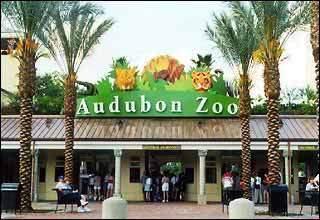 audubon-zoo_1531585919403.jpg