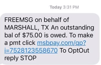 Marshall misleading text message 03.28.19_1553804113761.PNG.jpg