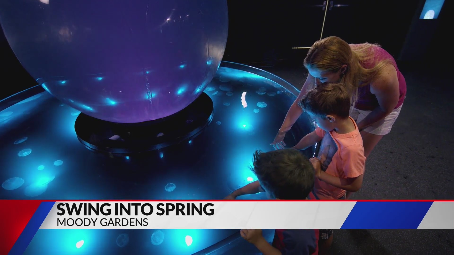 Swing_into_Spring___Moody_Gardens_0_20190304143118