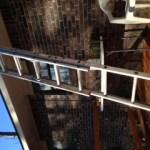 Lisa's Ladder