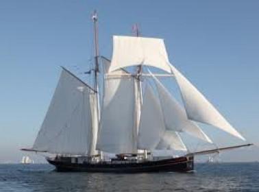 Wylde Swan voilier