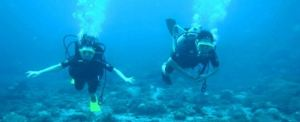 Outbound di Bali Pantai Tanjung Benoa DV