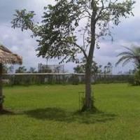 Outbound di Bali - Bali Outbound & Farmstay Bedugul