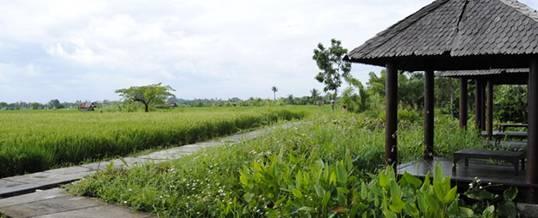 Outbound di Bali - Kertalangu Cultural Village Denpasar