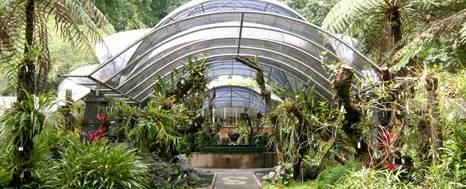 Bedugul Kebun Raya
